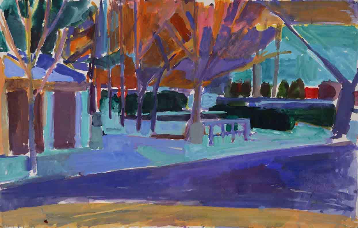 Studio View / Orange Trees